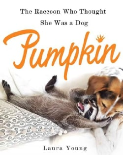 Pumpkin: The Raccoon Who Thought She Was a Dog (Hardcover)