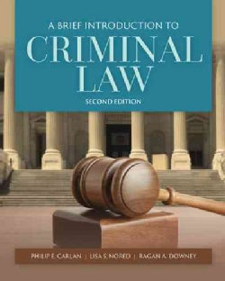 A Brief Introduction to Criminal Law (Paperback)