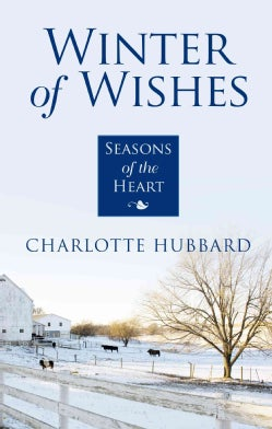 Winter of Wishes (Paperback)