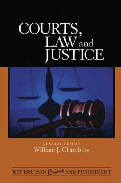 Courts, Law, and Justice (Hardcover)