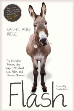 Flash: The Homeless Donkey Who Taught Me About Life, Faith, and Second Chances (Paperback)