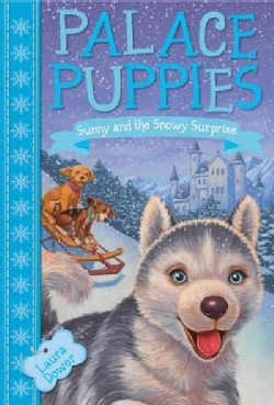 Sunny and the Snowy Surprise (Paperback)
