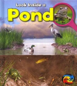 Pond (Hardcover)