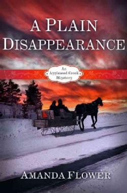 A Plain Disappearance (Paperback)