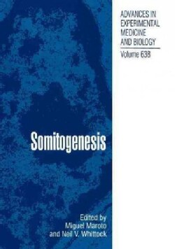 Somitogenesis (Paperback)