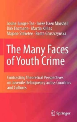 The Many Faces of Youth Crime: Contrasting Theoretical Perspectives on Juvenile Deliquency Across Countries and C... (Hardcover)
