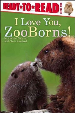 I Love You, ZooBorns! (Paperback)