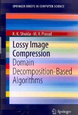 Lossy Image Compression: Domain Decomposition-Based Algorithms (Paperback)