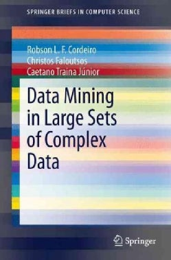 Data Mining in Large Sets of Complex Data (Paperback)