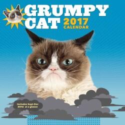 Grumpy Cat 2017 Calendar (Calendar)