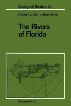 The Rivers of Florida (Paperback)