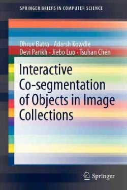 Interactive Co-Segmentation of Objects in Image Collections (Paperback)