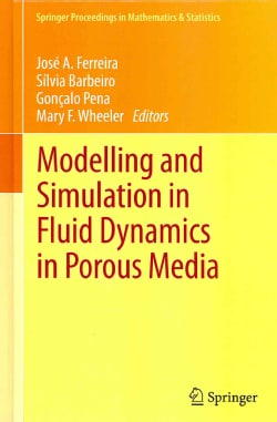 Modelling and Simulation in Fluid Dynamics in Porous Media (Hardcover)