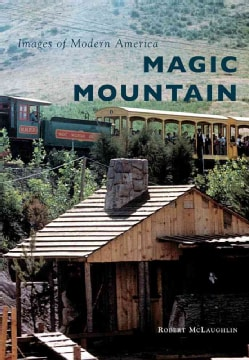 Magic Mountain (Paperback)