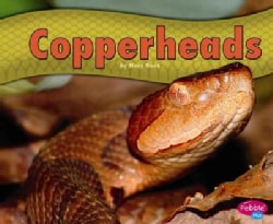 Copperheads (Hardcover)