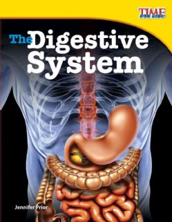 The Digestive System (Hardcover)