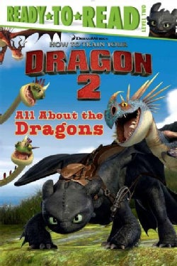 All About the Dragons (Paperback)