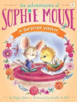 A Surprise Visitor (Paperback)