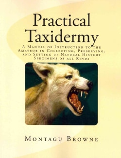 Practical Taxidermy: A Manual of Instruction to the Amateur in Collecting, Preserving, and Setting Up Natural His... (Paperback)