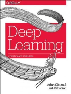 Deep Learning: A Practitioner's Approach (Paperback)