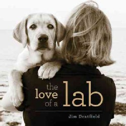 The Love of a Lab (Hardcover)