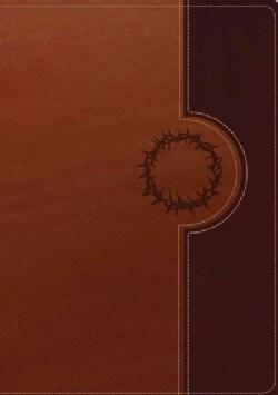 Biblia de estudio del diario vivir: Nueva traduccion viviente, cafe/cafe claro sentipiel (Paperback)