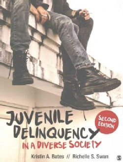 Juvenile Delinquency in a Diverse Society (Paperback)