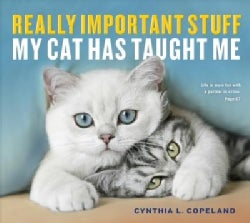 Really Important Stuff My Cat Has Taught Me (Paperback)