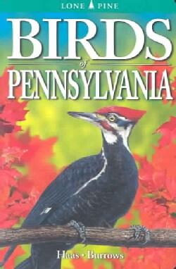 Birds Of Pennsylvania (Paperback)