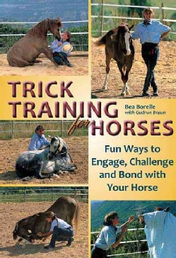 Trick Training for Horses: Fun Ways to Engage, Challenge, and Bond With Your Horse (Paperback)