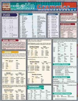 Latin Grammar (Paperback)