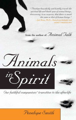 Animals in Spirit: Our Faithful Companions' Transition to the Afterlife (Paperback)