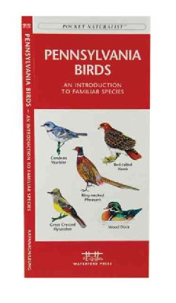 Pennsylvania Birds: A Folding Pocket Guide to Familiar Species (Paperback)