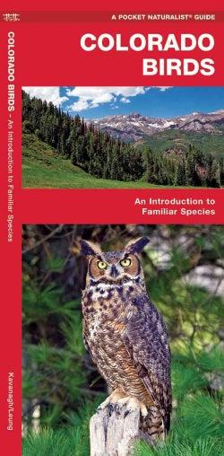Colorado Birds: A Folding Pocket Guide to Familiar Species (Paperback)