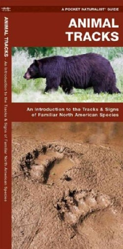 Animal Tracks: A Folding Pocket Guide to the Tracks & Signs of Familiar North American Species (Pamphlet)
