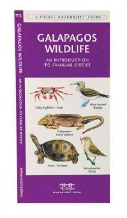 Galapagos Wildlife: A Folding Pocket Guide to Familiar Animals (Paperback)