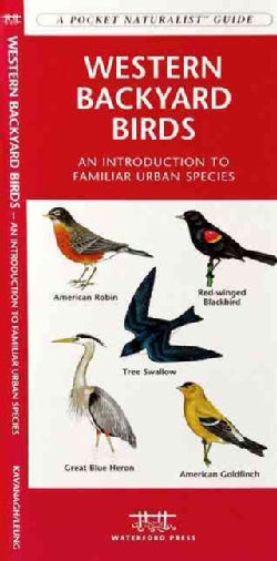 Western Backyard Birds: A Folding Pocket Guide to Familiar Urban Species (Paperback)
