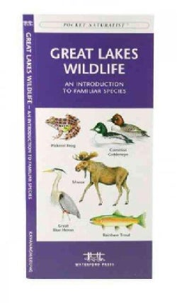 Great Lakes Wildlife: A Folding Pocket Guide to Familiar Species (Paperback)