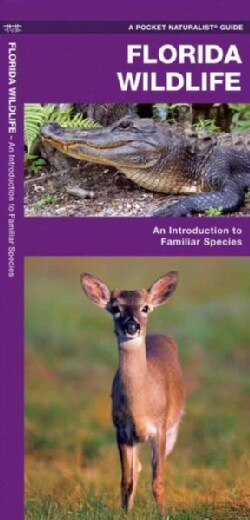 Florida Wildlife: A Folding Guide to Familiar Animals (Paperback)
