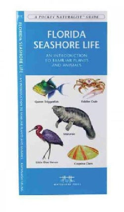 Florida Seashore Life: A Folding Pocket Guide to Familiar Plants and Animals (Paperback)