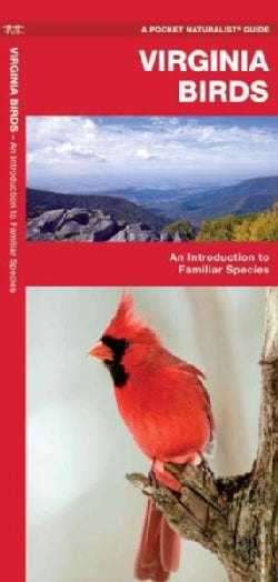 Virginia Birds: A Folding Pocket Guide to Familiar Species (Paperback)