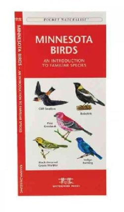 Minnesota Birds: A Folding Pocket Guide to Familiar Species (Paperback)