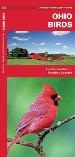 Ohio Birds: A Folding Pocket Guide to Familiar Species (Paperback)