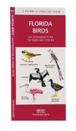 Florida Birds: A Folding Pocket Guide to Familiar Species (Paperback)