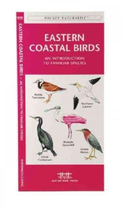 Eastern Coastal Birds: A Folding Pocket Guide to Familiar Species (Paperback)