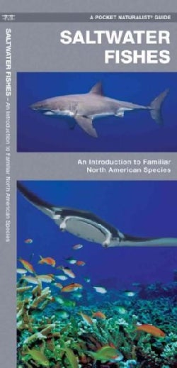 Saltwater Fishes: A Folding Pocket Guide to Familiar North American Species (Paperback)