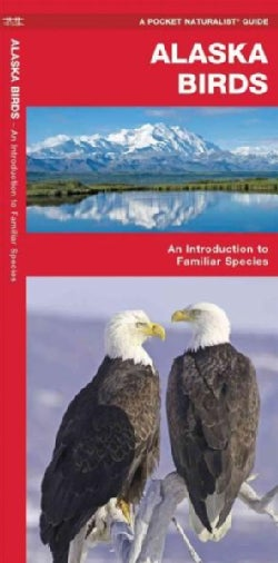Alaska Birds: A Folding Pocket Guide to Familiar Species (Paperback)