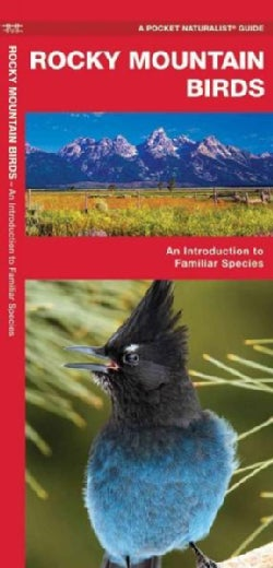 Rocky Mountain Birds: A Folding Pocket Guide to Familiar Species (Paperback)
