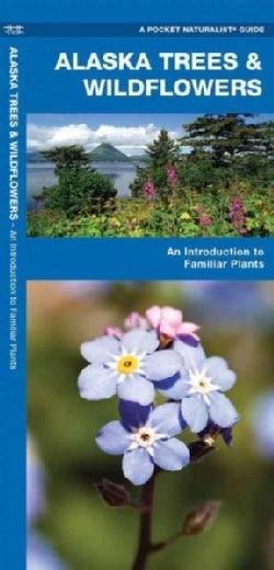 Alaska Trees & Wildflowers: A Folding Pocket Guide to Familiar Species (Paperback)