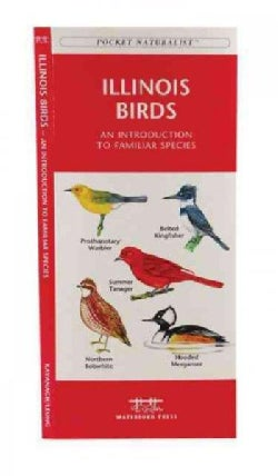 Illinois Birds: A Folding Pocket Guide to Familiar Species (Paperback)